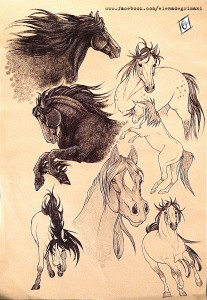 horsesketches